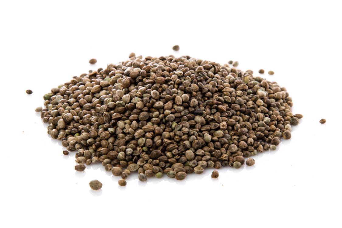 vegan protein hemp seeds
