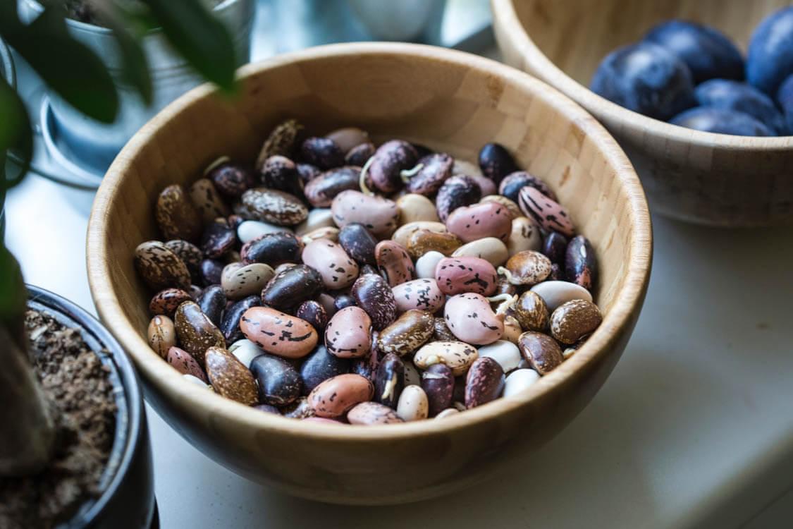 vegan protein beans