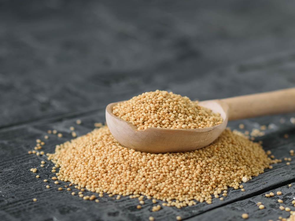 vegan protein amaranth